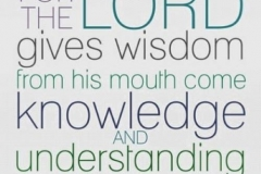 Don't lean on your own understanding. Seek wisdom from the Lord!